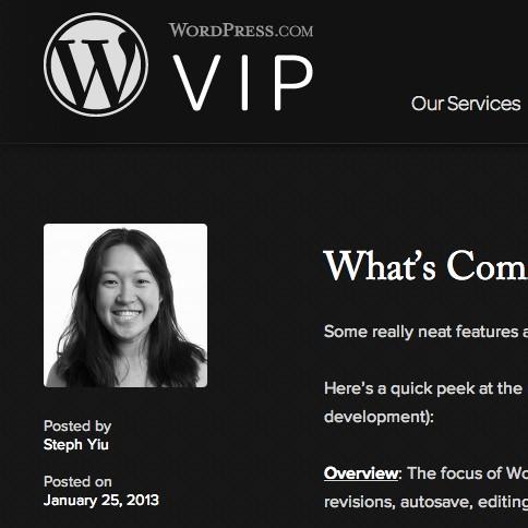 vip-blog-wp36